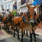 4-horse-carriage