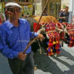 Colourful-Oxen-San-Isidro