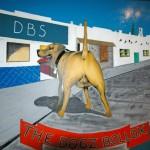 DBs-Nerja