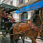 Horse-carriage-Nerja