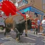 Ox-San-Isidro-Nerja
