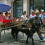 Pony-and-trap-Nerja