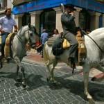 San-Isidro-Horses