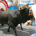 San-Isidro-Nerja-Ox