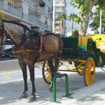 Trip round nerja by horse and carriage