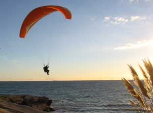 Paraglider Similar To That Involved in Saturdays Accident