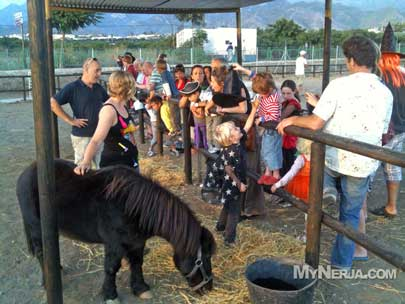 Nerja Donkey Sanctuary Donkey Rides