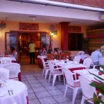 jaipur-nerja-terrace2
