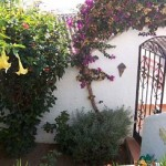 Capistrano Apartment Nerja