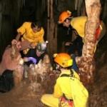 <!--:en-->Samples Taken From Nerja Caves Paintings <!--:-->