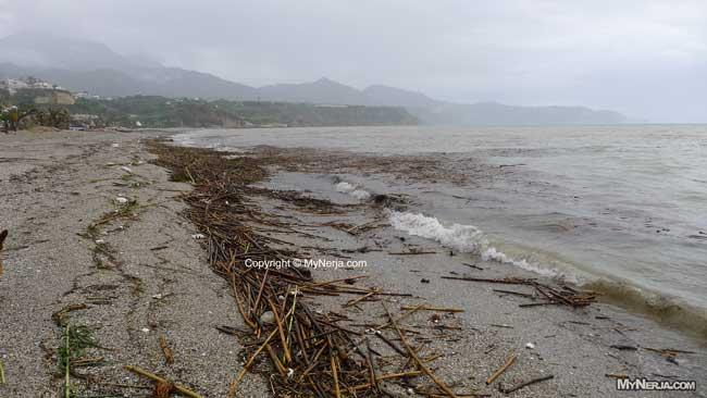 Driftwood On Burriana Beach