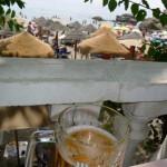 beer-papagayos