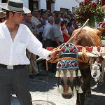 Frigiliana Feria 2015