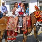 feria-horses2