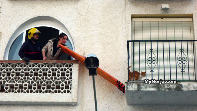 Cat Rescue Nerja