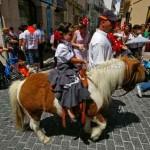 Young-girl-on-pony