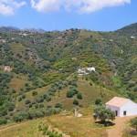 Cortijo-More-Views