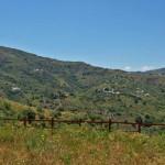 Cortijo-Panorama-2