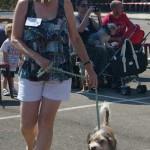 Scruffs Dog Show Nerja