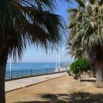 <!--:en-->Botanical Gardens Planned For Torrecilla<!--:-->